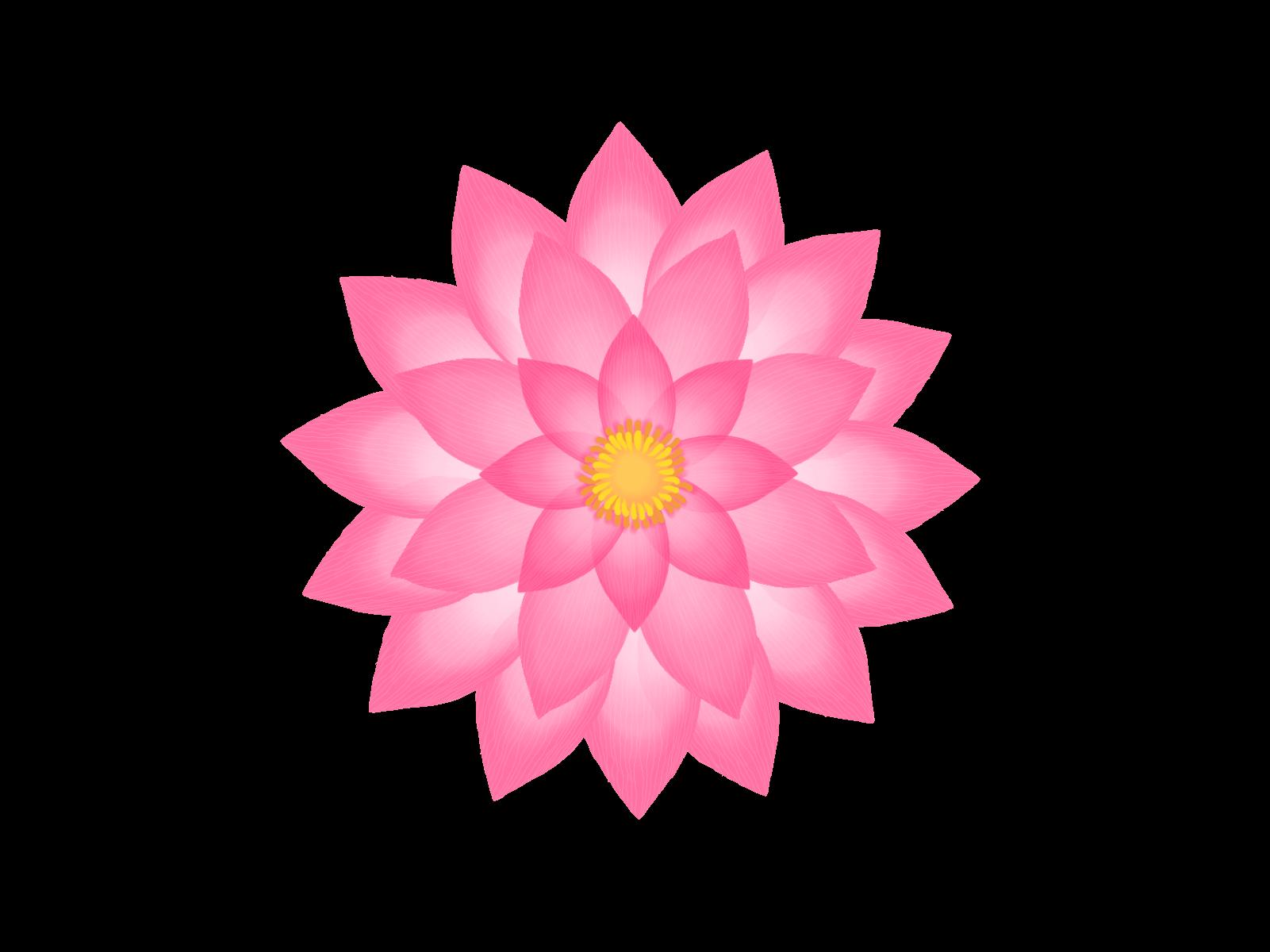 The Lotus Framework